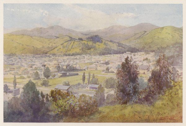 Nelson: distant view