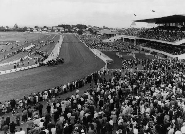 Final Command wins the Perek Cup horse race at Auckland, New Zealand. Date: 1960s