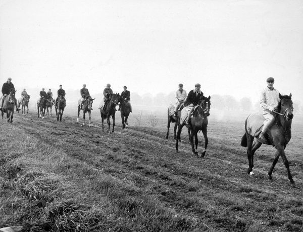 Exercising racehorses at Newmarket, England. Date: 1962
