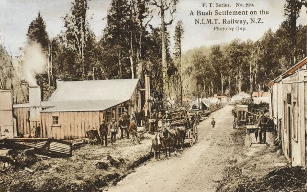 A Bush Settlement on the NIMT, North Island Main Trunk, Railway in New Zealand