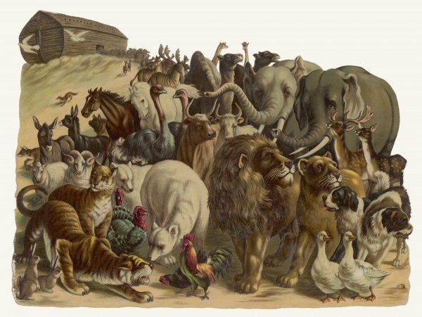 The animals emerge two by two from Noah's Ark