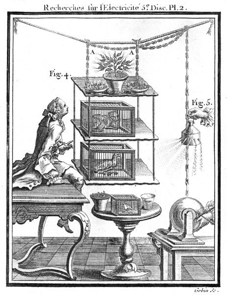 Nollet investigates the effects of electricity on living subjects - plants, a cat and a bird. Date: 1754