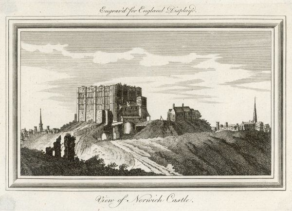 Norwich Castle : the vegetation growing on the upper walls suggests that the city elders are not taking very good care of it