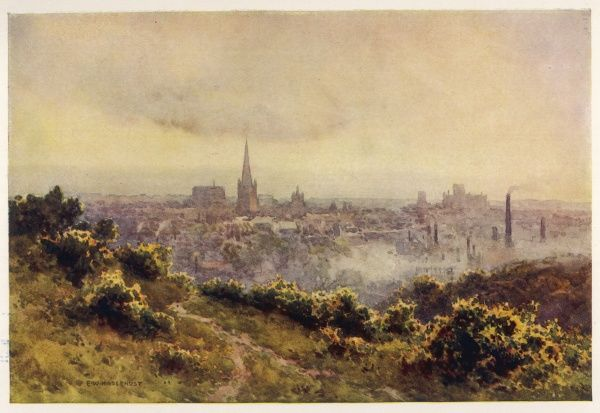 A distant view of the city from Mousehold Heath
