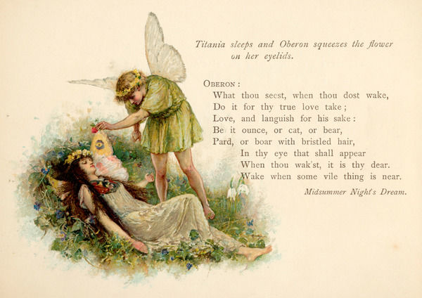 Act II, Scene II Oberon squeezes the flower onto Titania's eyelids