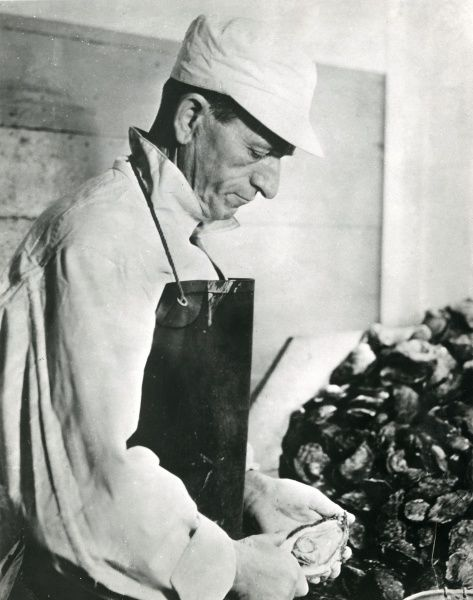 A man prises open oysters at Scott's Oyster Bar in the West End of London. Date: 1930s