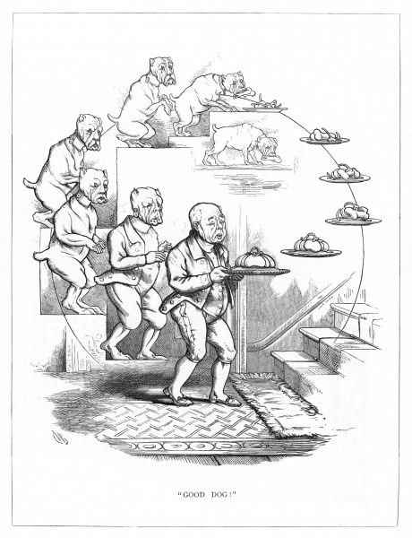 'Good Dog'. Satire on Darwin's 'Origin of Species' showing the evolution of an old faithful male servant from an old dog. The salver that the old fellow carries evolves into a mere plate of bones - a reward for a constant life