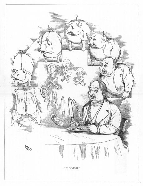 'Piggish'. Satire on Darwin's 'Origin of Species' showing the evolution of a man who eats too much, from a pig. This old glutton, fond of good eating is a natural descendant of the pig, with its pointed ears and elongated snout