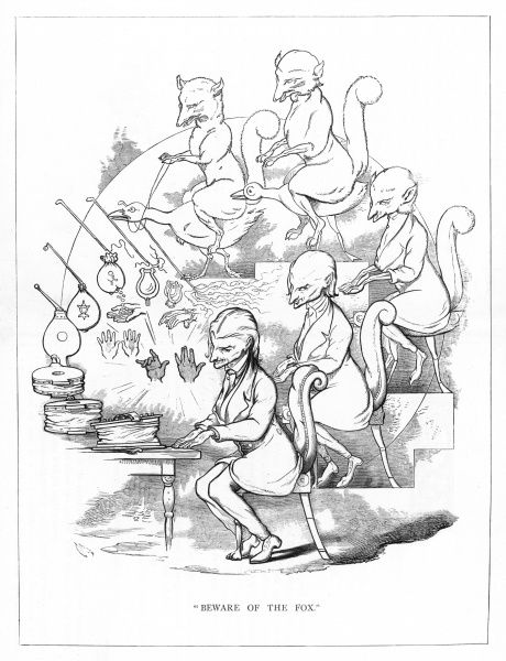 'Beware of the fox'. Satire on Darwin's 'Origin of Species' showing the evolution of a sly looking man from a fox. The back of his chair becoming a furry tail, the seat and legs a goose