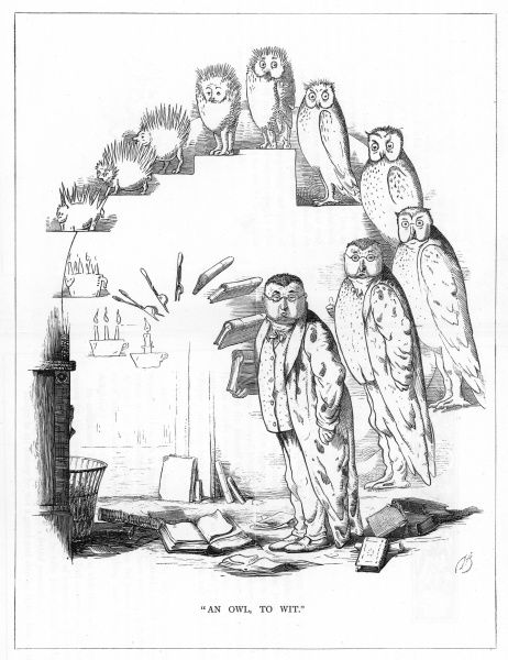 'An owl to wit'. Satire on Darwin's 'Origin of Species' showing the evolution of a wit, from a candle, via a porcupine and owl