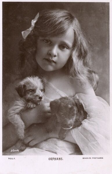 Possibly the ultimate sentimental postcard of all time.... This delightful photograph is entitled 'Orphans' an one might be correct to assume that both the two puppies and the young girl are indeed orphans. Date: circa 1920s