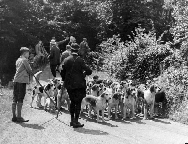 A rather upper crust Meet of the hounds of the Buckfast Otter Hunt, Devon, England. Date: 1930s