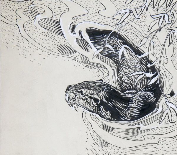 A pen & ink illustration of an Otter from the 'Wild Animals in Britain Book', illustrated by Raymond Sheppard