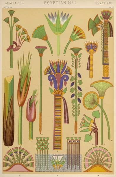 Representations of plants of importance in Ancient Egypt: the lotus, papyrus, buds, ivy and grapes