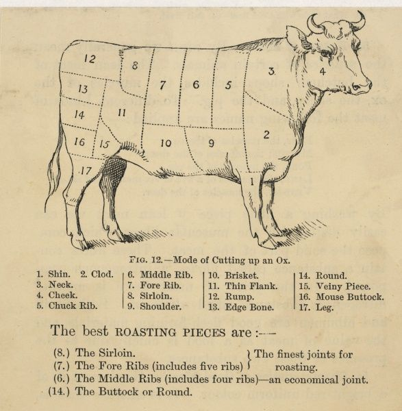 A diagram showing ox cuts