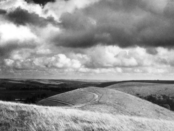 Ox Drove, a Prehistoric trackway, along the top of the Downs. A view taken from Wingreen, Wiltshire, England. Date: 1930s
