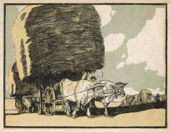 Harvesting with an ox-wagon