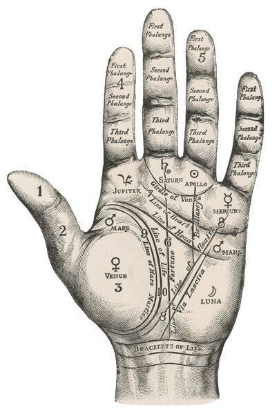A palmistry map of the hand, labelling the different areas
