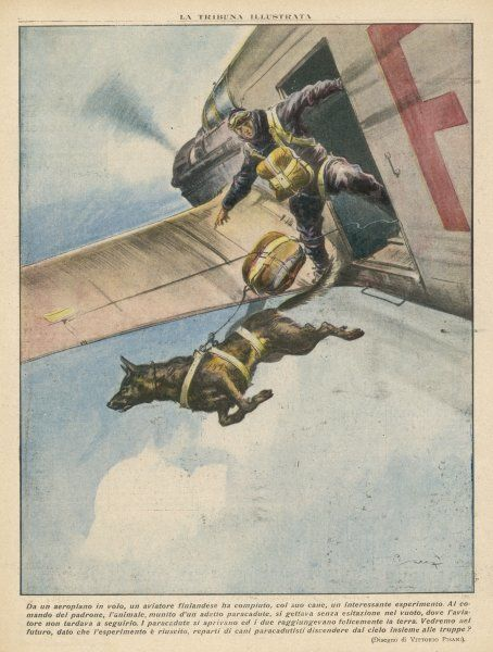 A Finnish parachutist jumps with his dog