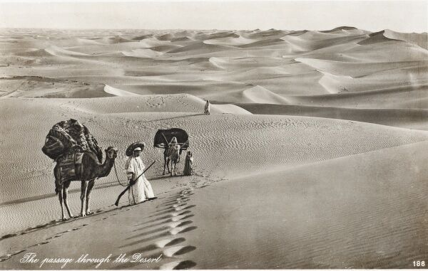 The shifting sands of the Egyptian desert