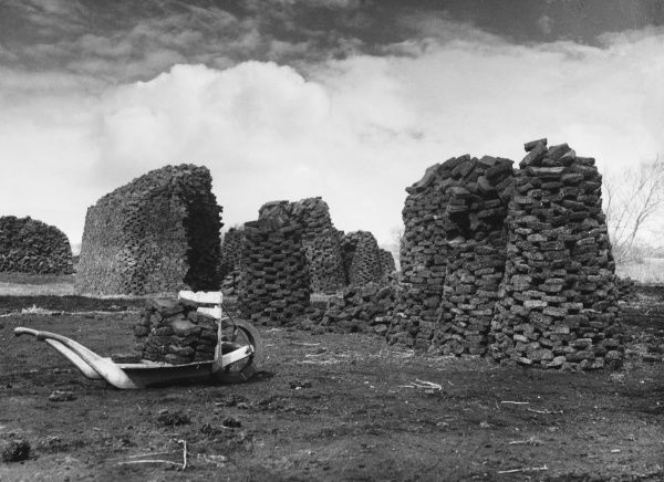 Wedmore, Somerset. The peat is cut in squares, then slabs and then stacked into round stacks to dry. This takes about 2 months and then it is ready for fuel