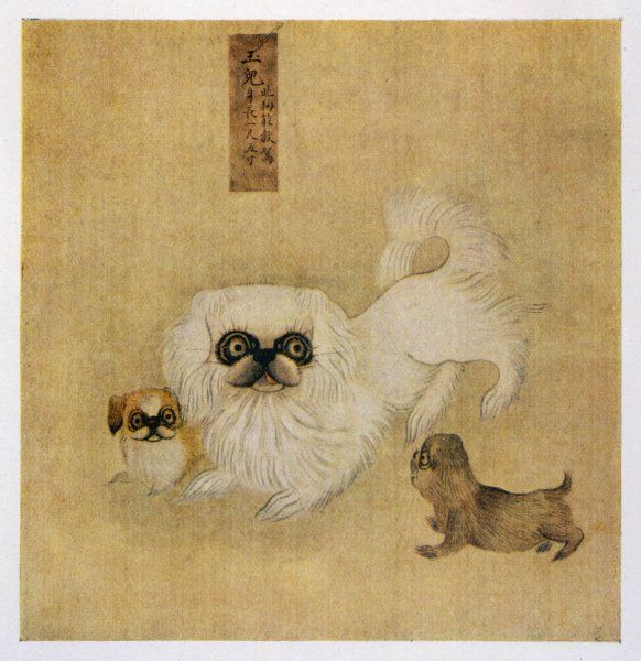 A white pekingese dog and puppies as depicted in an Imperial Dog Book