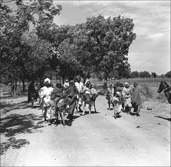 People and donkeys on a road in Madhya Pradesh Province, India. Photograph by Ralph Ponsonby Watts
