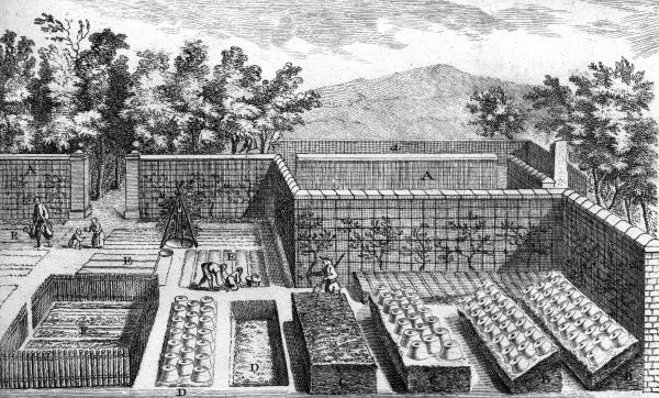 People working in a neatly laid out vegetable garden in 18th century France. Date: circa 1760