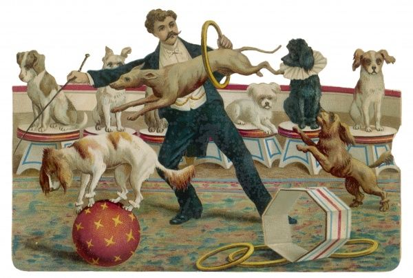 Dogs jump through a hoop at the Paris Hippodrome