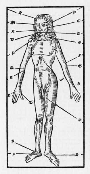 PHLEBOTOMY CHART OF THE HUMAN BODY showing which veins should be opened to cure specific ailments by letting blood