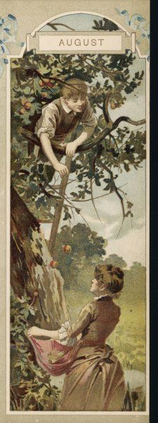 The boy up the tree throws apples down to the girl waiting below