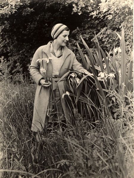 A woman in a chic outfit of beanie hat, shorts and belted coat picks flag irises in marshy countryside