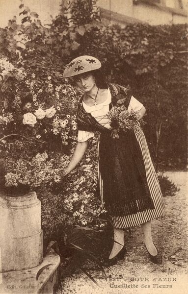 Woman picking Flowers on the Cote d'Azur, France. She is wearing an interestingly-patterned flat straw sunhat. Date: circa 1910s