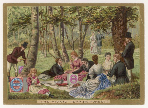 Biscuits seem to be the feature of this picnic in Epping Forest, north of London - and not just any old biscuits, but Huntley & Palmer's, of course !