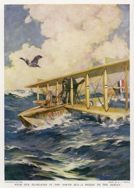 A broken down seaplane in the North Sea sends out a pigeon carrying an SOS message of help during the First World War