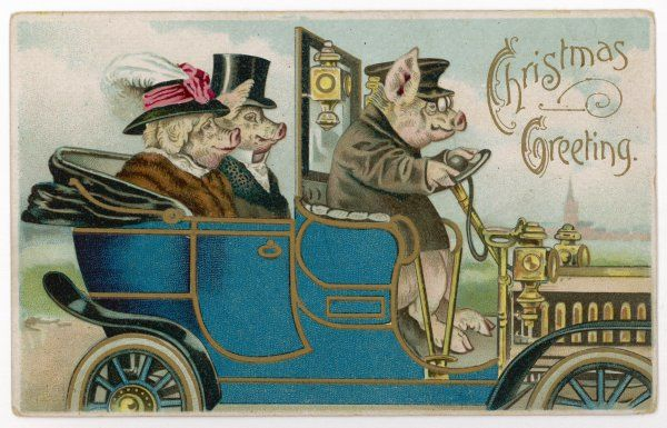 Two well-off and well-dressed pigs out for a spin in their chauffeur-driven car