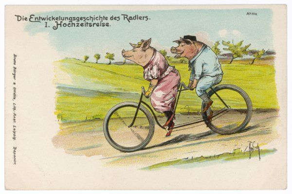 Two happy pigs out for a ride on their tandem bicycle