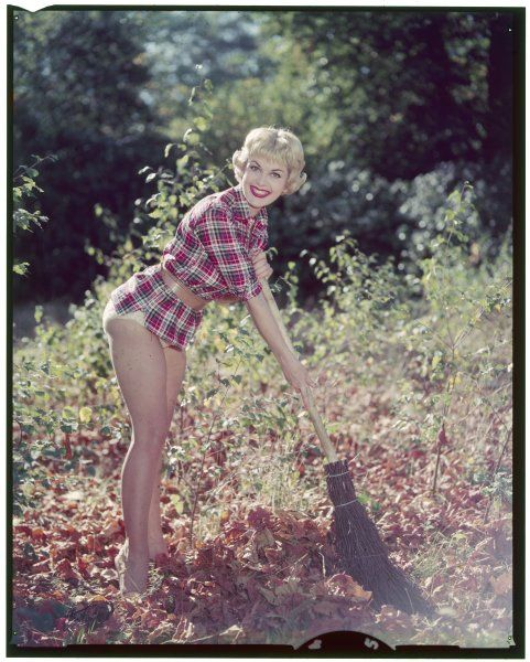 Cheesy blonde, grinning insanely, sweeps autumn leaves with a besom broom, wearing nothing more than a short checked shirt, belt & white knickers