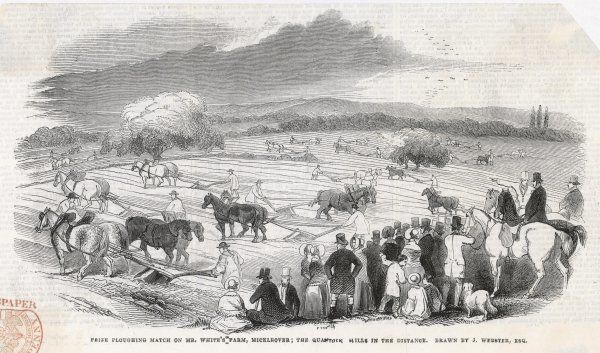 A ploughing contest at Mr White's farm, Mickleover - the Quantock Hills are in the distance