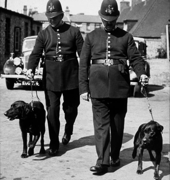 Two policemen with their dogs