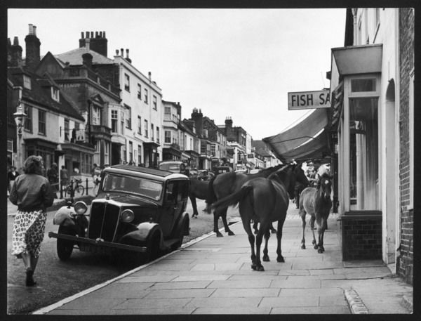 "New Forest ponies ""shopping"" (much to one woman's amazement) at Lymington in Hampshire, England"