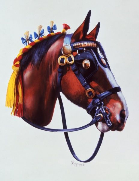 A detailed portrait painting by Malcolm Greensmith showing the head of a elaborately decorated working horse at a show, with hair braiding and ribbons, buffed and polished tack and shining horse brasses