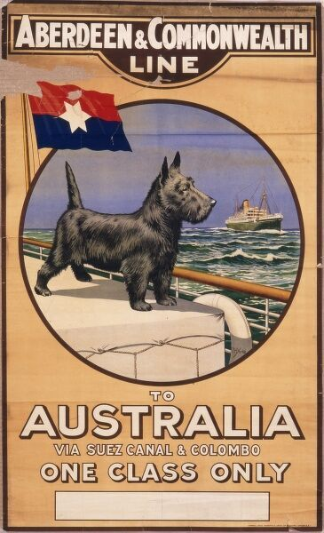 Poster for the Aberdeen & Commonwealth Line: cruises to Australia via the Suez Canal and Colombo (one class only)
