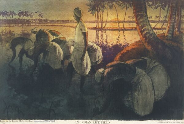 Poster for the Empire Marketing Board, depicting an Indian rice field