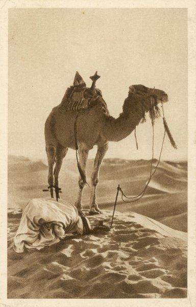A Moslem prays in the desert, his face towards Mecca, while his camel waits patiently