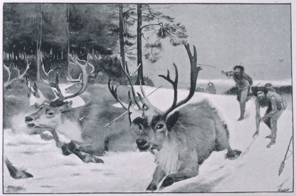 Men hunting reindeer in prehistoric southern France