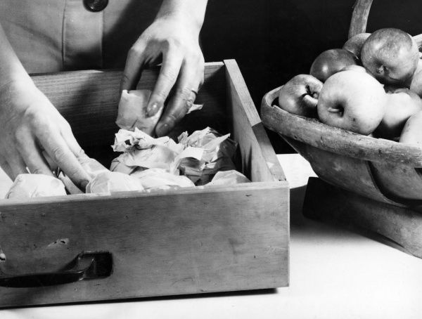 Apples keep better of they are wrapped in paper and placed in a cool dark drawer. Date: 1930s