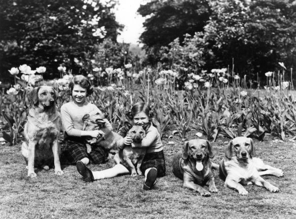 Photograph of Princess Elizabeth (now Queen Elizabeth II) and Princess Margaret in 1936 taken with their labradors and their corgis, Jane and Dookie. Date