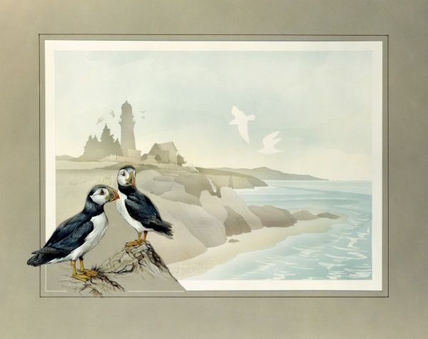 Two puffins set in to the border framing this coastal scene of a rocky coastline with a lighthouse stop the high cliffs. Airbrush and watercolour painting by Malcolm Greensmith