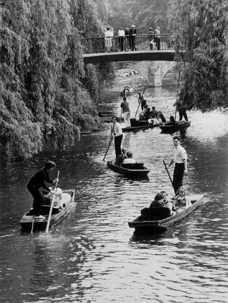 Punting on the Cam (also known as the Granta) on the Backs at Cambridge ; at Cambridge, punters stand on the flat platform at the stern of the vessel. Date: 1950s